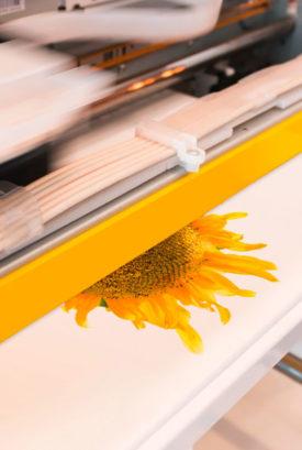 Digitaldruck DTG Direct to Garment